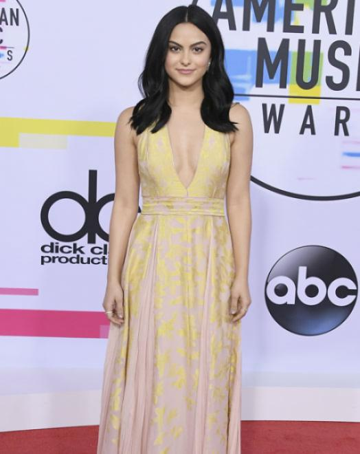 Camela Mendes - American Music Awards 2017 - Credit Getty Images