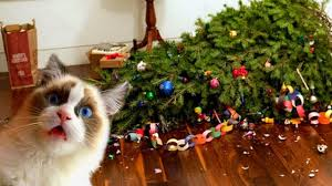 Cats and Dogs vs Christmas Tree Funny Cats and Funny Dogs That Destroyed Christmas TREE