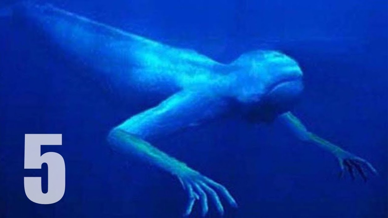 EXTREMELY-CREEPY- DEEP-SEA -CREATURES