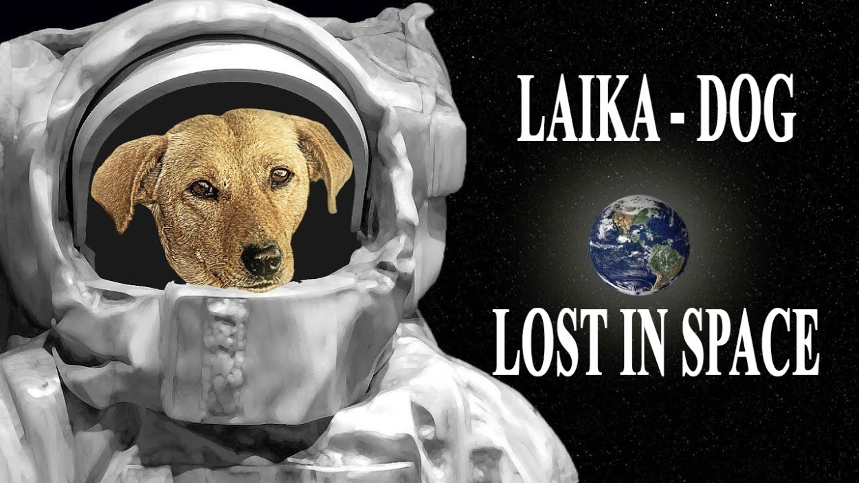 The-SAD-Story-of-LAIKA-First-DOG-In-SPACE-60-YEARS-