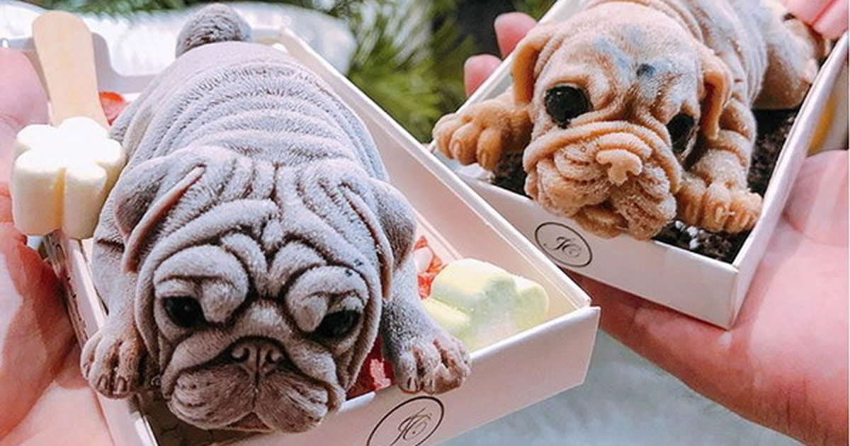 Taiwan Restaurant Dishes Up Ice Cream Puppies Almost Too Real To Eat